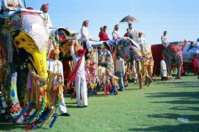 holi_decorated_elephants.jpg
