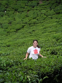 me_in_the_tea_plants_2_may
