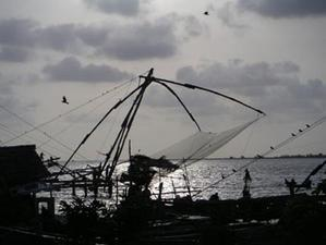 nets_in_the_evening2_29_apr