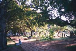 park_in_pondicherry_21_apr