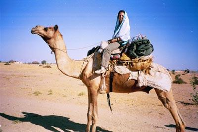 me_on_camel.jpg