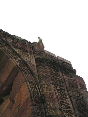 parrot3_at_qutb_minar_22_oct_2003.JPG