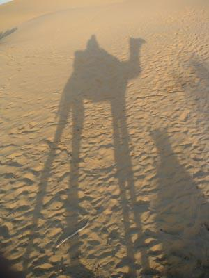 shadow_of_camel4_3_mar.jpg